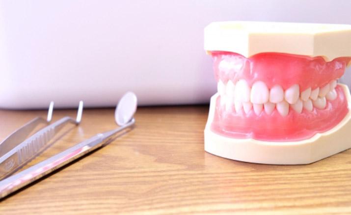 日本メタルフリー歯科学会においても
